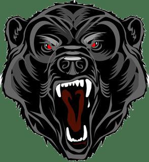 KMT Grizzlys Dornbirn